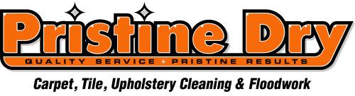 Pristine Dry Retina Logo