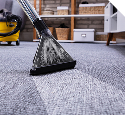 carpet cleaning service near me